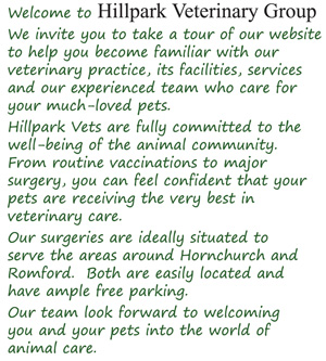 Welcome to Hillpark Veterinary Group We invite you to take a tour of our website to help you become familiar with our veterinary practice, its facilities, services and our experienced team who care for your much-loved pets. Hillpark Vets are fully committed to the well-being of the animal community. From routine vaccinations to major surgery, you can feel confident that your pets are receiving the very best in veterinary care. Our surgeries are ideally situated to serve the areas around Hornchurch and Romford. Both are easily located and have ample free parking. Our team look forward to welcoming